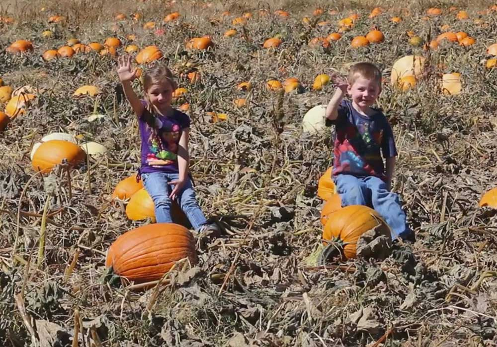 Carson Valley Fall Activites
