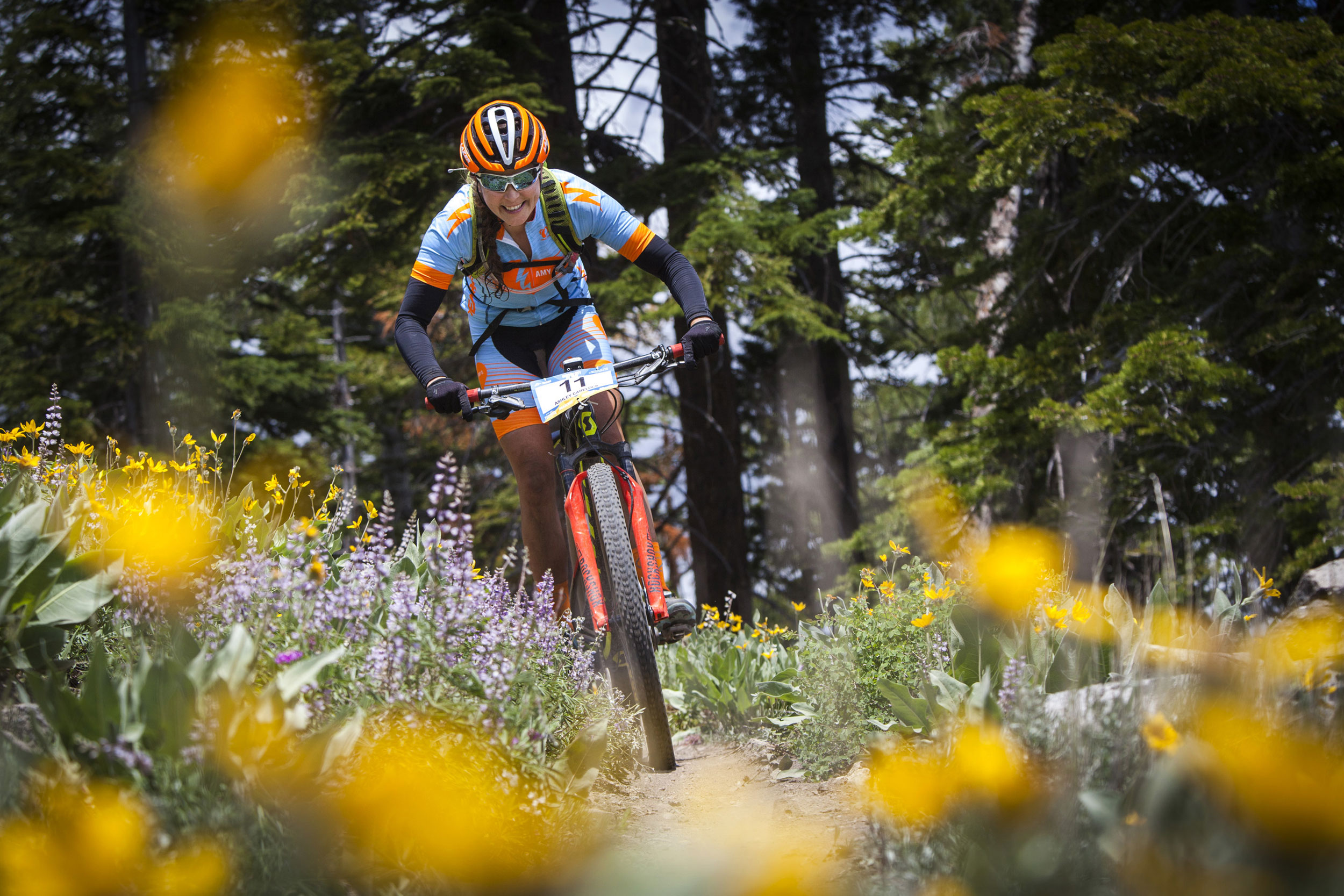 A mountain biker rides along flowers in Carson City.